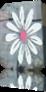 pt_fleur3